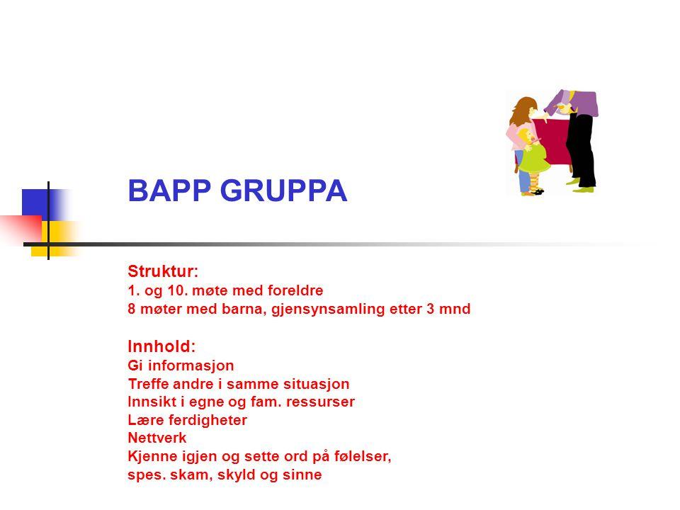 BAPP GRUPPA Struktur: 1. og 10. møte med foreldre 8 møter med barna, gjensynsamling etter 3 mnd Innhold: Gi informasjon Treffe andre i samme situasjon
