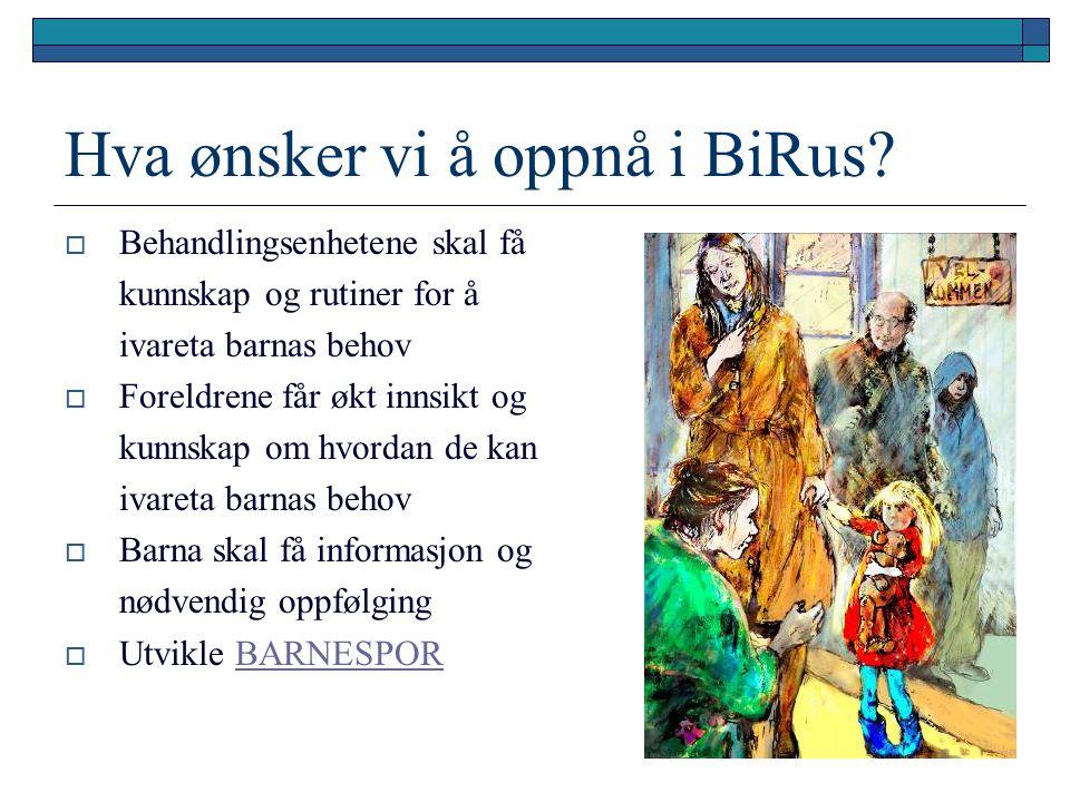 Hva ønsker vi å oppnå i BiRus?  Behandlingsenhetene skal få kunnskap og rutiner for å ivareta barnas behov  Foreldrene får økt innsikt og kunnskap o