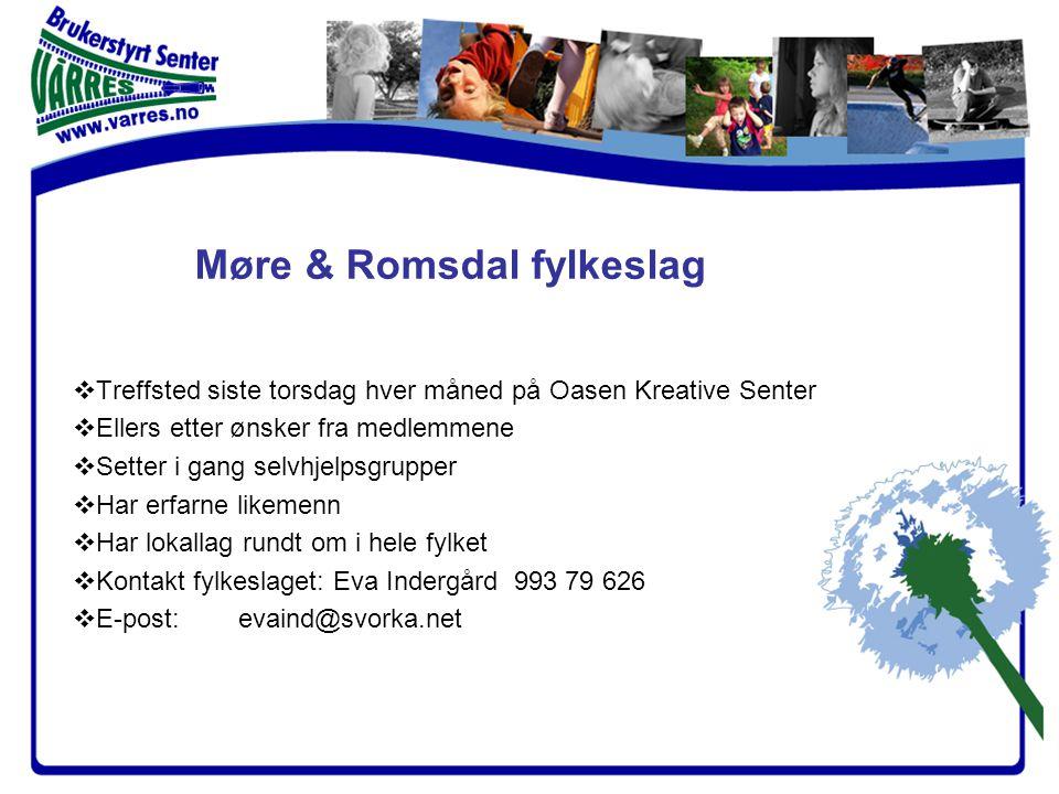 Vårres brukerstyrt senter Verktøy for deltakende organisasjoner Finansiert av Helsedirektoratet og Trondheim kommune – forankret i hjelpeapparatet gjennom styrerepresentanter fra LMS ved BUP og DPS.