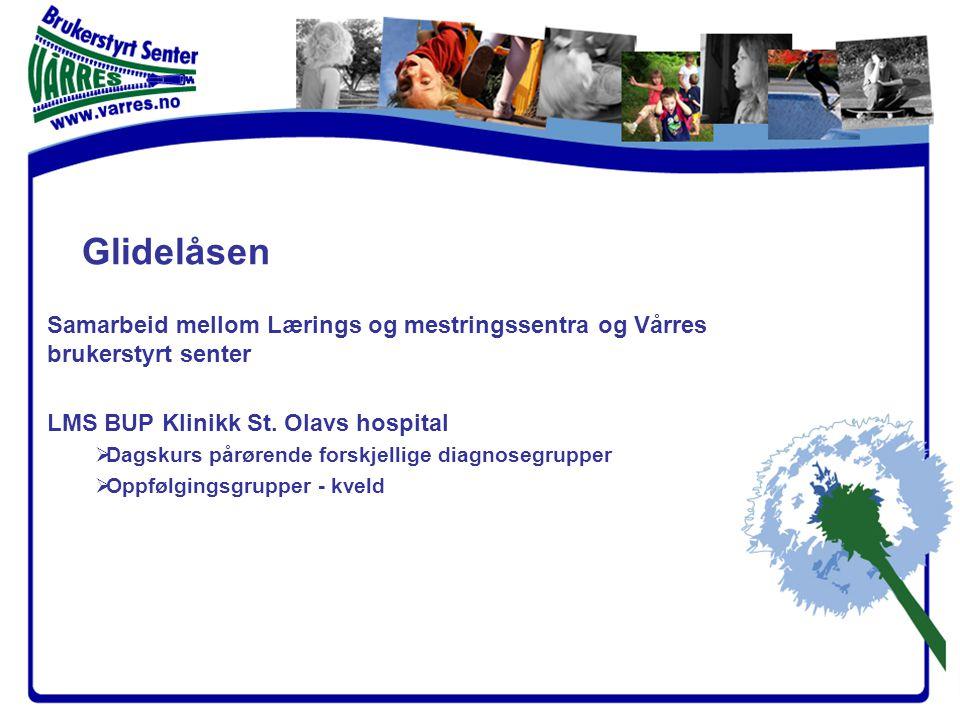 Samarbeid mellom Lærings og mestringssentra og Vårres brukerstyrt senter LMS BUP Klinikk St.