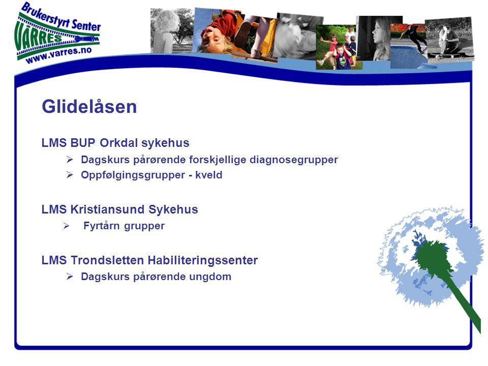 Glidelåsen LMS Helse Sunnmøre  Helsepedagogikk for brukere / pårørende