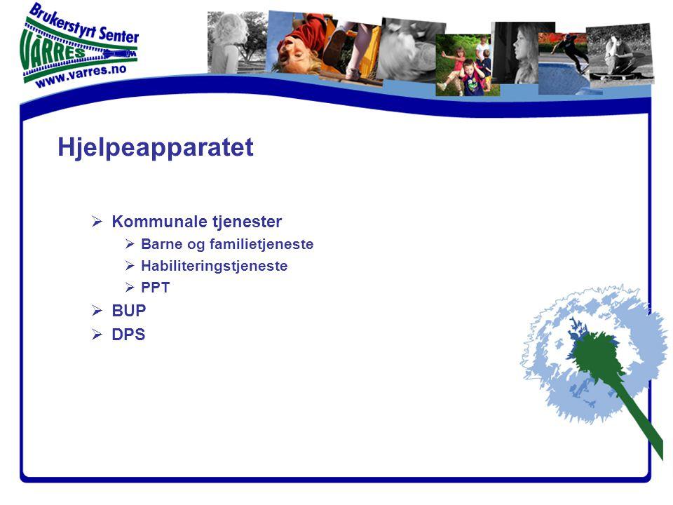 Hjelpeapparatet  Kommunale tjenester  Barne og familietjeneste  Habiliteringstjeneste  PPT  BUP  DPS