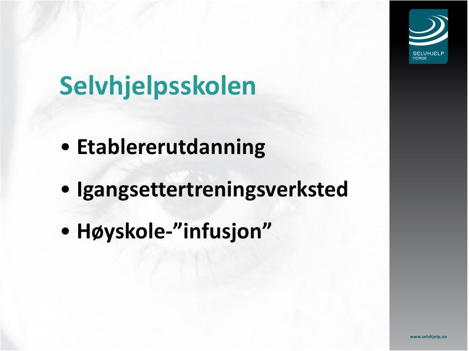 """Selvhjelpsskolen Etablererutdanning Igangsettertreningsverksted Høyskole-""""infusjon"""""""