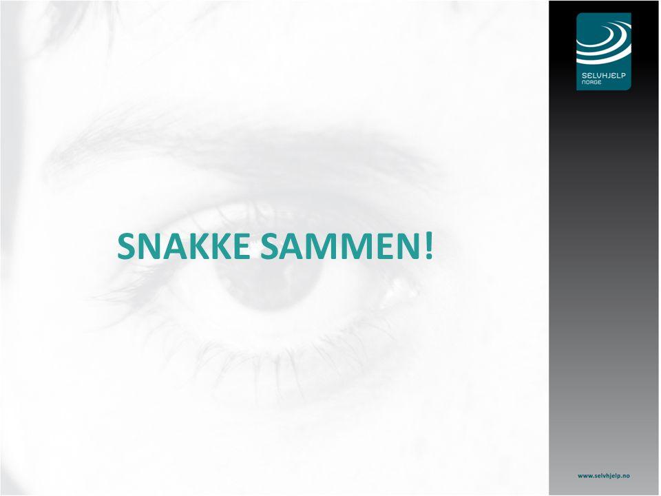 SNAKKE SAMMEN!