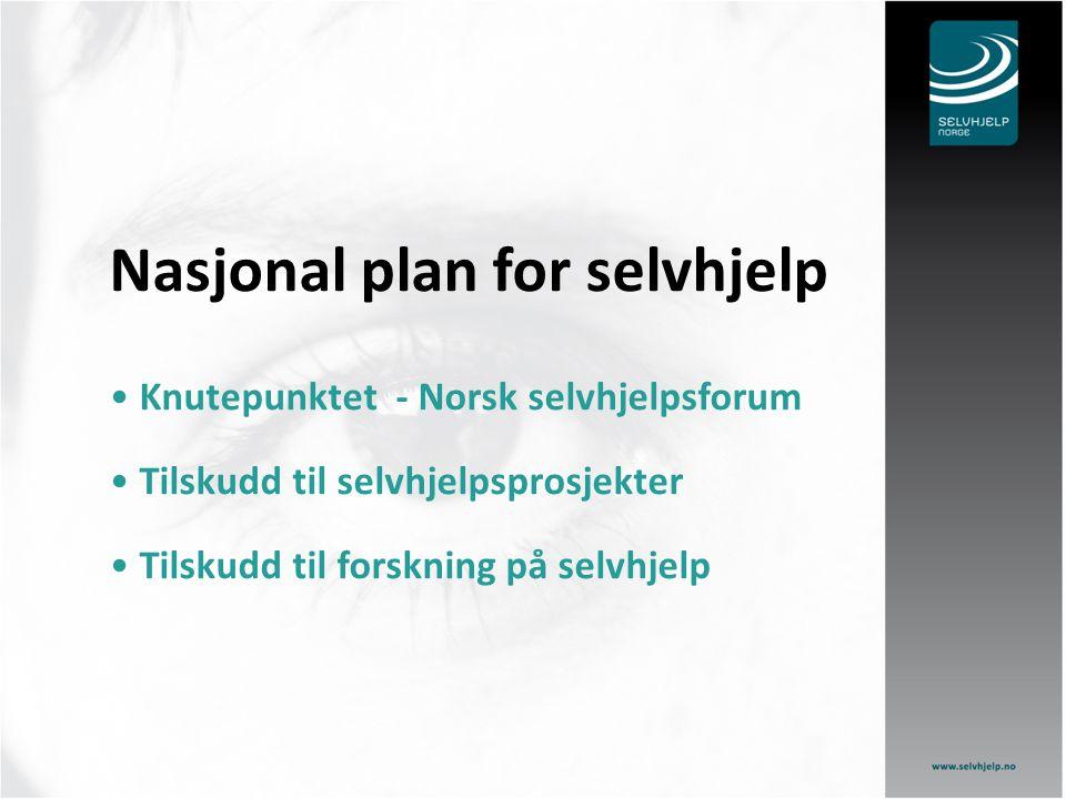 Knutepunktet Selvhjelp Norge Prosjekt fra april 2006 finansiert av Sosial- og Helsedirektoratet under Opptrappings- planen for psykisk helse.