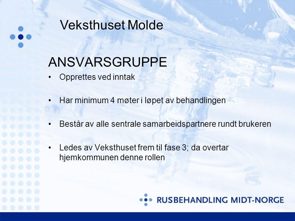 Veksthuset Molde ANSVARSGRUPPE Opprettes ved inntak Har minimum 4 møter i løpet av behandlingen Består av alle sentrale samarbeidspartnere rundt bruke