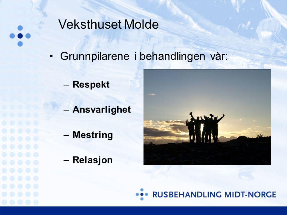Grunnpilarene i behandlingen vår: –Respekt –Ansvarlighet –Mestring –Relasjon Veksthuset Molde