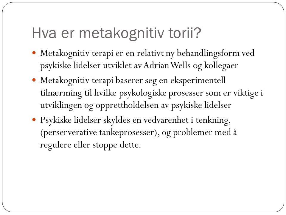 Hva er metakognitiv terapi.