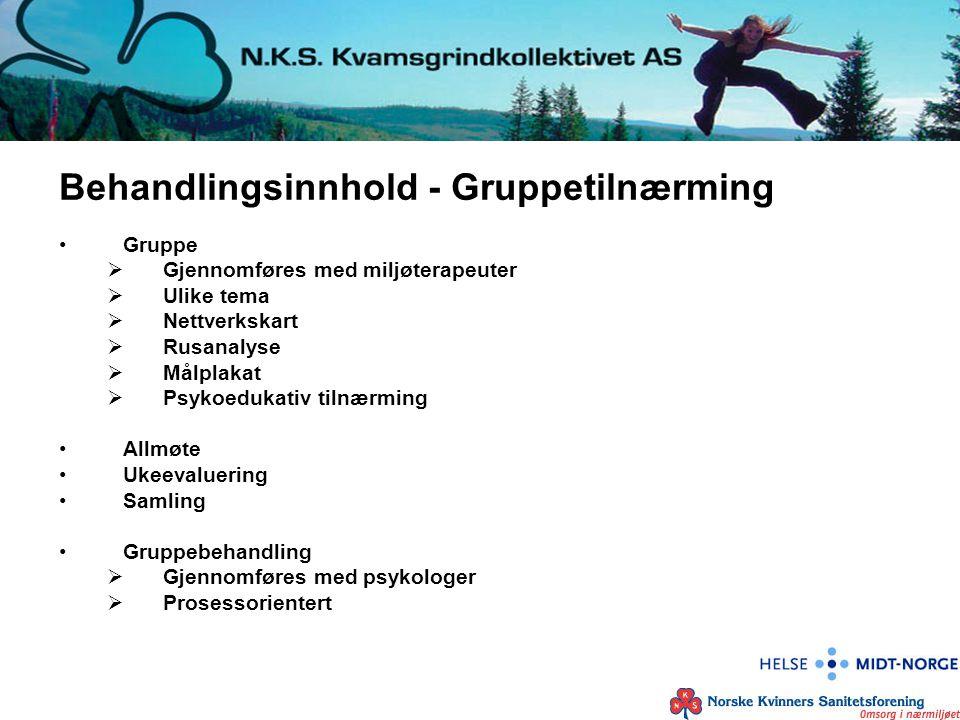 Behandlingsinnhold - Gruppetilnærming Gruppe  Gjennomføres med miljøterapeuter  Ulike tema  Nettverkskart  Rusanalyse  Målplakat  Psykoedukativ