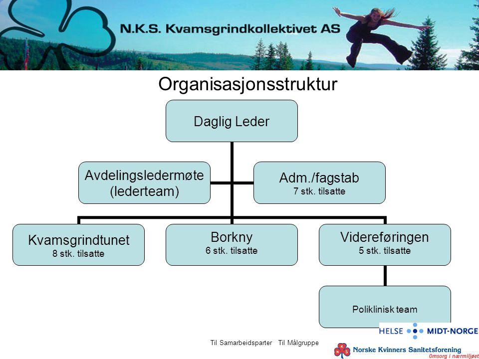 Organisasjonsstruktur Daglig Leder Kvamsgrindtunet 8 stk. tilsatte Borkny 6 stk. tilsatte Videreføringen 5 stk. tilsatte Poliklinisk team Avdelingsled