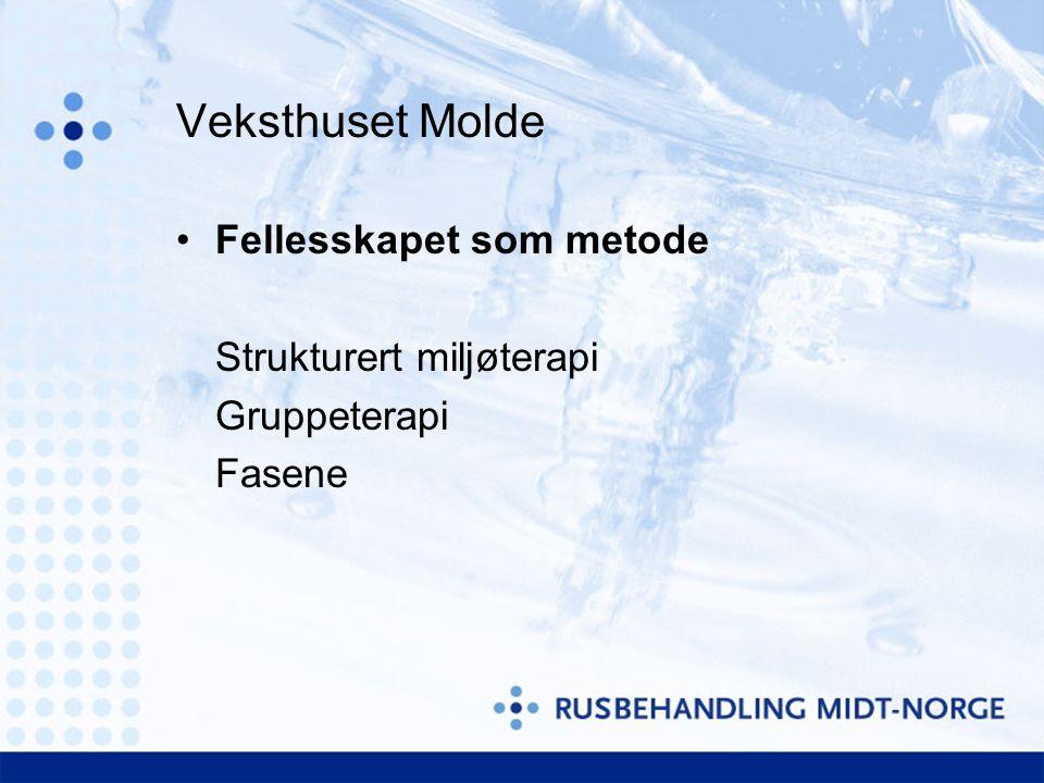 Veksthuset Molde Fellesskapet som metode Strukturert miljøterapi Gruppeterapi Fasene