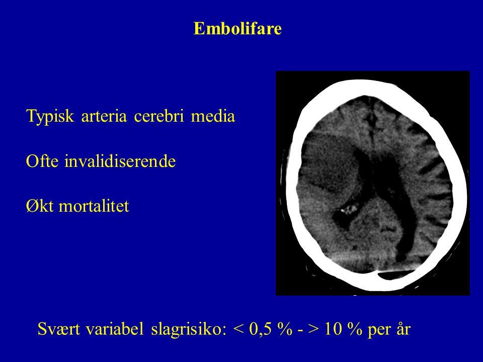 Typisk arteria cerebri media Ofte invalidiserende Økt mortalitet Embolifare Svært variabel slagrisiko: 10 % per år
