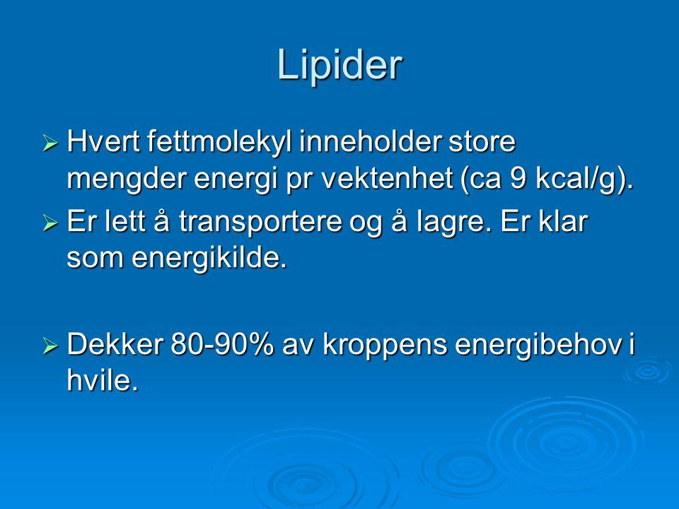 Lipider  Hvert fettmolekyl inneholder store mengder energi pr vektenhet (ca 9 kcal/g).  Er lett å transportere og å lagre. Er klar som energikilde.