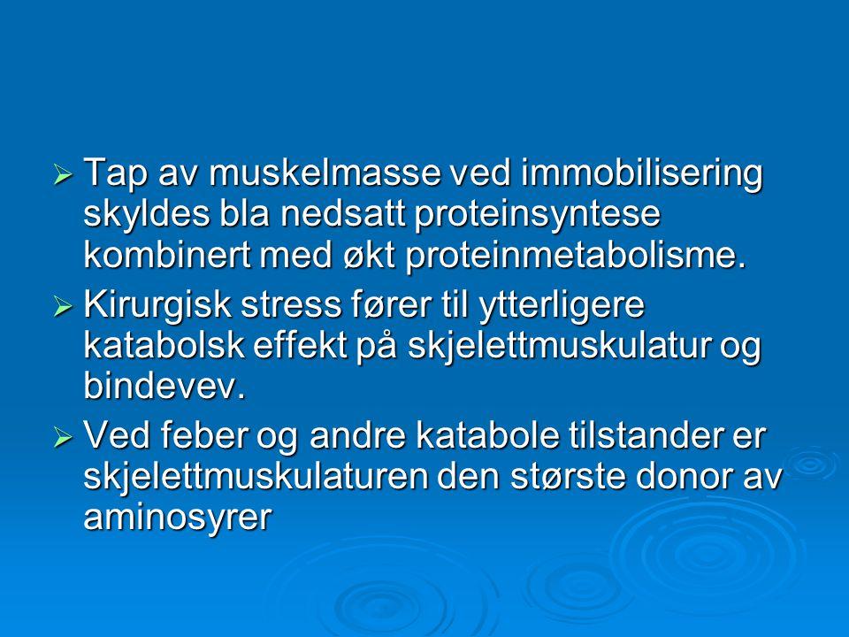  Tap av muskelmasse ved immobilisering skyldes bla nedsatt proteinsyntese kombinert med økt proteinmetabolisme.  Kirurgisk stress fører til ytterlig
