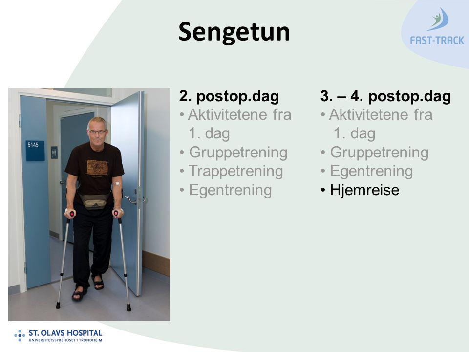 Sengetun 2.postop.dag Aktivitetene fra 1. dag Gruppetrening Trappetrening Egentrening 3.