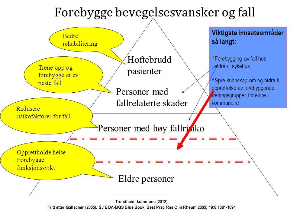 Eldre Eldre med begynnende funksjonssvikt og økt fallrisiko Eldre med etablert funksjonssvikt og fallrelaterte skader Eldre med sammensatte funksjonsproblemer Trondheim kommune (2012) Fritt etter Gallacher (2005).