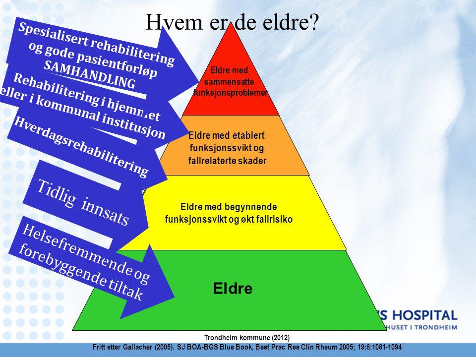 Eldre Eldre med begynnende funksjonssvikt og økt fallrisiko Eldre med etablert funksjonssvikt og fallrelaterte skader Eldre med sammensatte funksjonsp