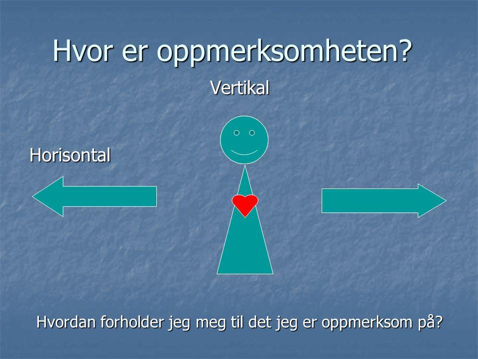 Hvor er oppmerksomheten? VertikalHorisontal Hvordan forholder jeg meg til det jeg er oppmerksom på?