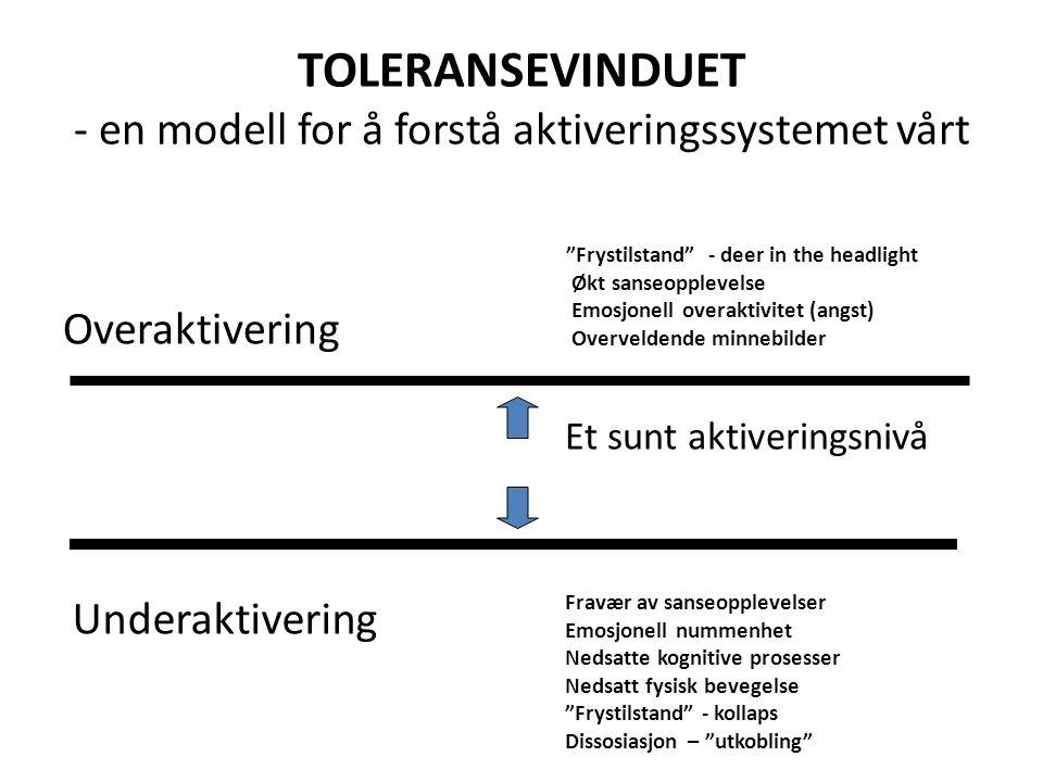 """TOLERANSEVINDUET - en modell for å forstå aktiveringssystemet vårt Overaktivering Underaktivering Et sunt aktiveringsnivå """"Frystilstand"""" - deer in the"""