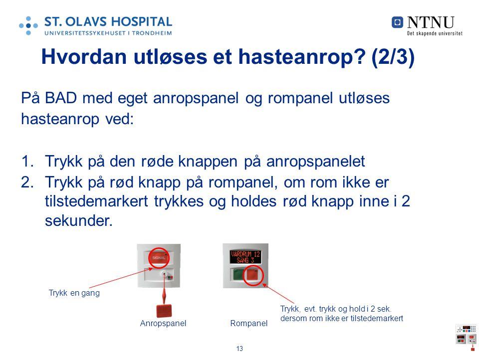 13 Hvordan utløses et hasteanrop? (2/3) På BAD med eget anropspanel og rompanel utløses hasteanrop ved: 1.Trykk på den røde knappen på anropspanelet 2