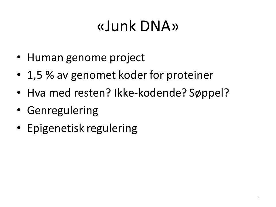 «Junk DNA» Human genome project 1,5 % av genomet koder for proteiner Hva med resten? Ikke-kodende? Søppel? Genregulering Epigenetisk regulering 2