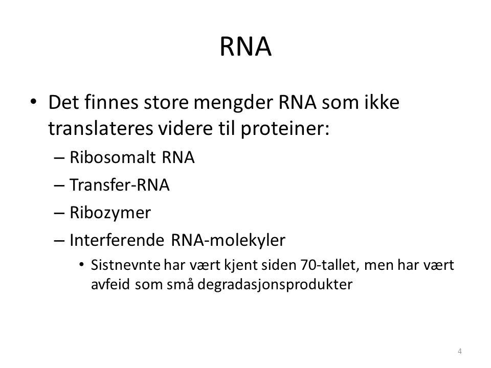 RNA Det finnes store mengder RNA som ikke translateres videre til proteiner: – Ribosomalt RNA – Transfer-RNA – Ribozymer – Interferende RNA-molekyler