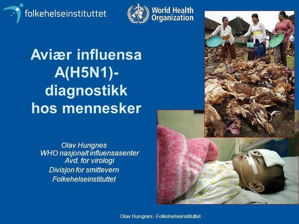 Olav Hungnes - Folkehelseinstituttet Aviær influensa A(H5N1)- diagnostikk hos mennesker Olav Hungnes WHO nasjonalt influensasenter Avd.
