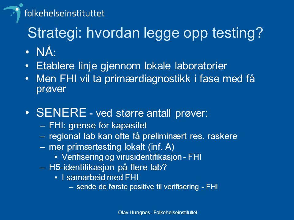 Olav Hungnes - Folkehelseinstituttet Strategi: hvordan legge opp testing.