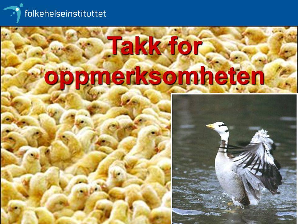 Olav Hungnes - Folkehelseinstituttet Takk for oppmerksomheten