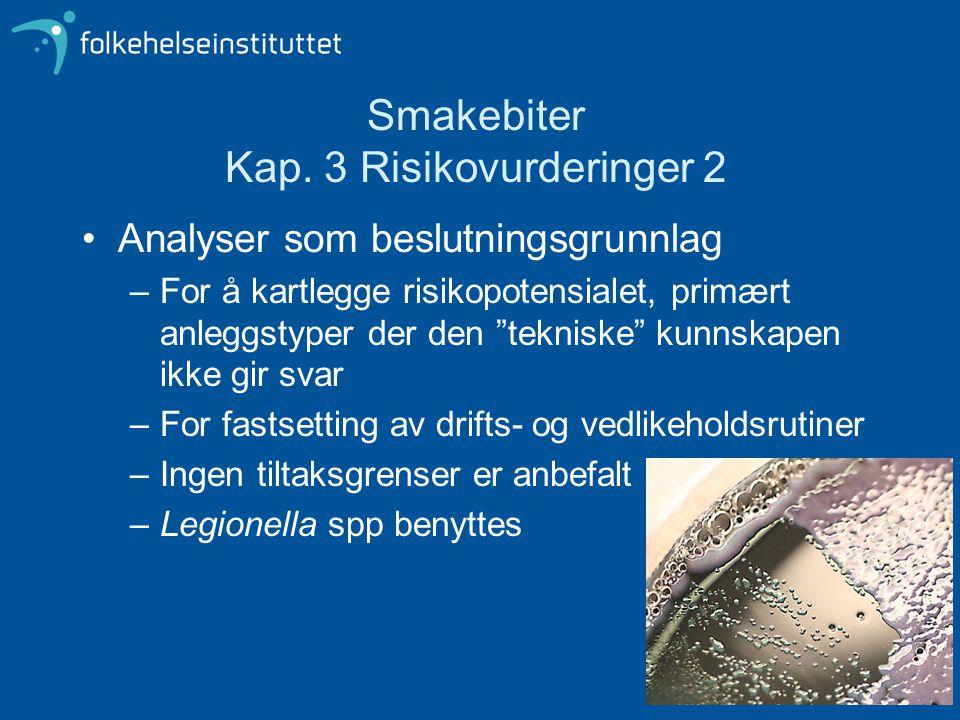 """Smakebiter Kap. 3 Risikovurderinger 2 Analyser som beslutningsgrunnlag –For å kartlegge risikopotensialet, primært anleggstyper der den """"tekniske"""" kun"""