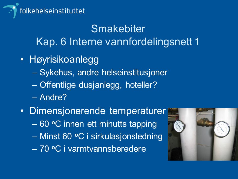 Smakebiter Kap. 6 Interne vannfordelingsnett 1 Høyrisikoanlegg –Sykehus, andre helseinstitusjoner –Offentlige dusjanlegg, hoteller? –Andre? Dimensjone