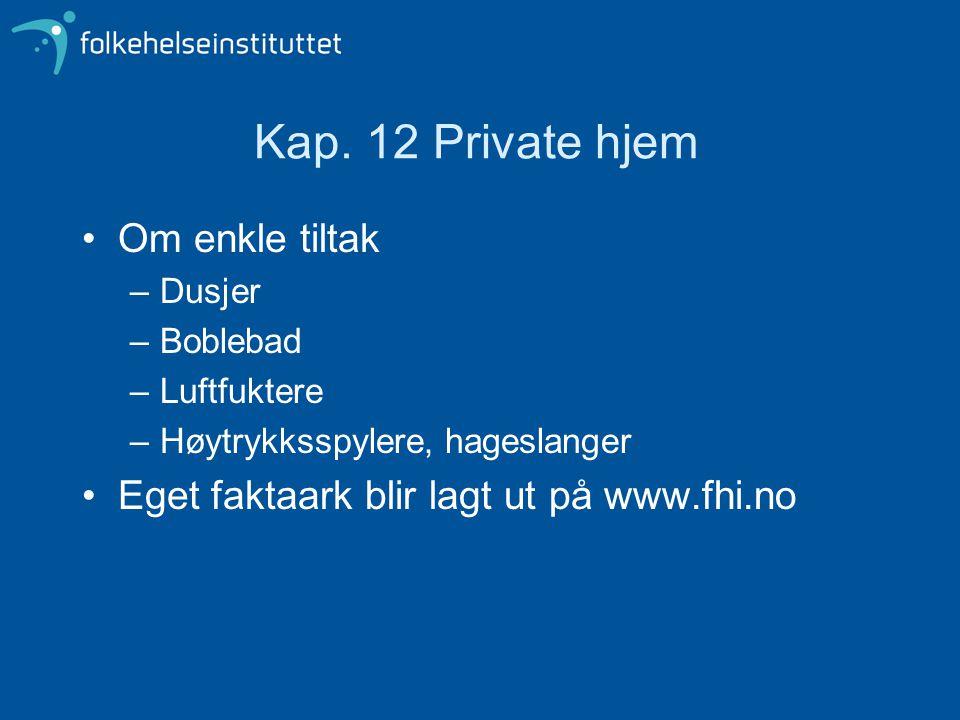 Kap. 12 Private hjem Om enkle tiltak –Dusjer –Boblebad –Luftfuktere –Høytrykksspylere, hageslanger Eget faktaark blir lagt ut på www.fhi.no