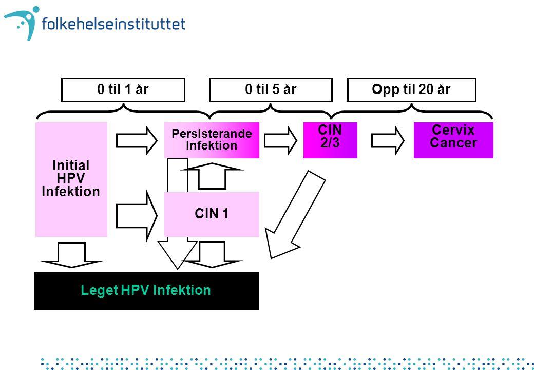 HPV vaksine Molekylærbiologisk fremstilling DNA sekvensen som koder for de type-spesifikke kappeproteinene er klippet ut av virusgenomet Overført til sopp eller insektscellekulturer Cellene produserer kappeproteinet Kappeproteinene festes på Virus like particles ved molekylærbiologisk teknikk De to firmaene har forskjellig adjuvans.