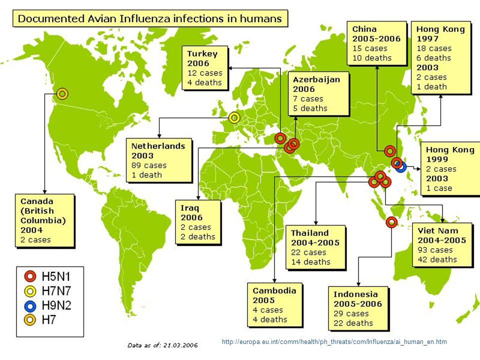 Global status humane tilfeller Kilde: WHO 21.mars 2006