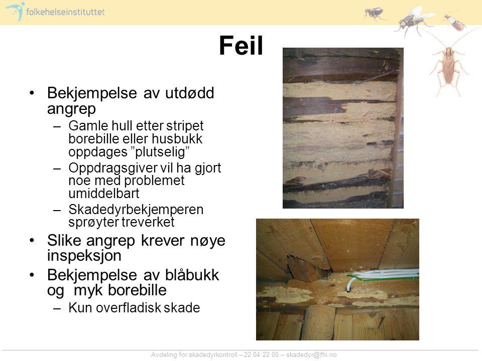 Avdeling for skadedyrkontroll – 22 04 22 00 – skadedyr@fhi.no Feil Bekjempelse av utdødd angrep –Gamle hull etter stripet borebille eller husbukk oppd