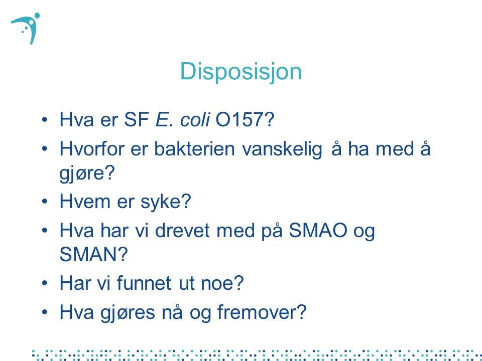 Disposisjon Hva er SF E. coli O157? Hvorfor er bakterien vanskelig å ha med å gjøre? Hvem er syke? Hva har vi drevet med på SMAO og SMAN? Har vi funne