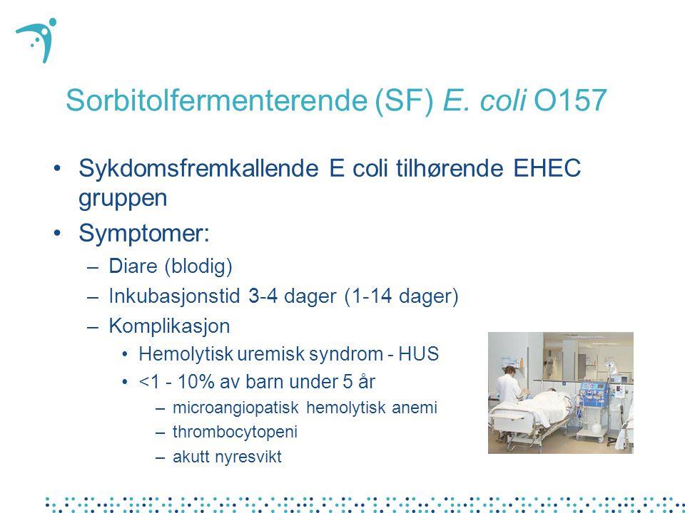 Sorbitolfermenterende (SF) E. coli O157 Sykdomsfremkallende E coli tilhørende EHEC gruppen Symptomer: –Diare (blodig) –Inkubasjonstid 3-4 dager (1-14