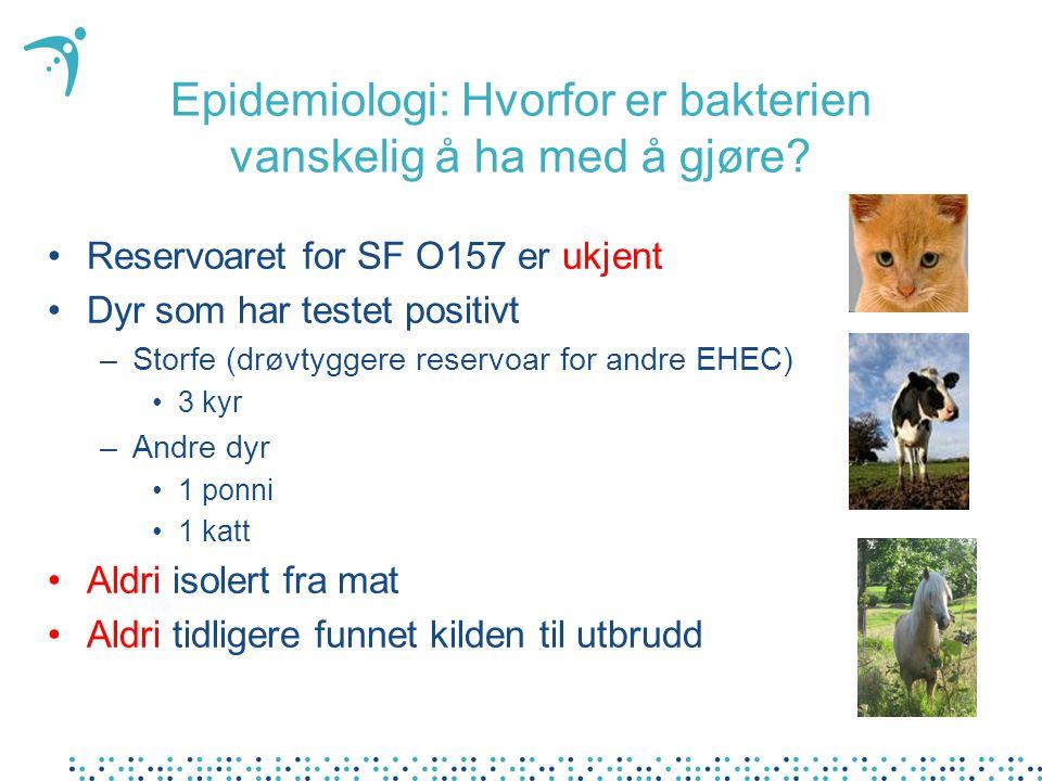 Epidemiologi: Hvorfor er bakterien vanskelig å ha med å gjøre? Reservoaret for SF O157 er ukjent Dyr som har testet positivt –Storfe (drøvtyggere rese