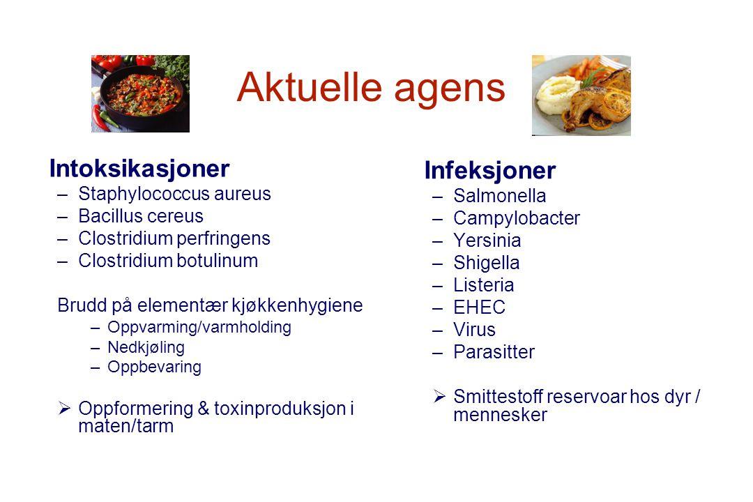 Aktuelle agens Intoksikasjoner –Staphylococcus aureus –Bacillus cereus –Clostridium perfringens –Clostridium botulinum Brudd på elementær kjøkkenhygie
