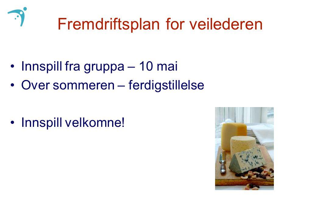 Fremdriftsplan for veilederen Innspill fra gruppa – 10 mai Over sommeren – ferdigstillelse Innspill velkomne!