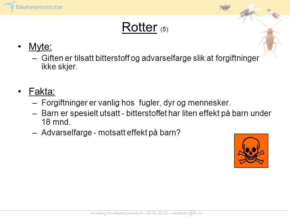 Rotter (6) Myte: –Rotter (og mus) som spiser gift blir tørste og trekker ut av huset før de dør.