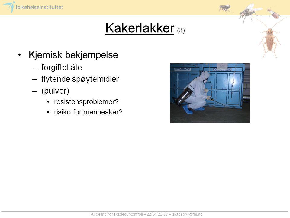 Rotter (1) Stort skadedyrproblem –private –næringsmiddelbedrifter –restauranter –kloakksystemer Utbredelse –utbredt over hele Norge Avdeling for skadedyrkontroll – 22 04 22 00 – skadedyr@fhi.no