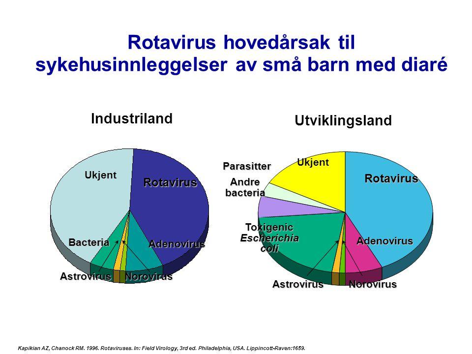 Rotavirus hovedårsak til sykehusinnleggelser av små barn med diaré Ukjent Rotavirus Norovirus Bacteria Rotavirus Toxigenic Escherichia coli Parasitter