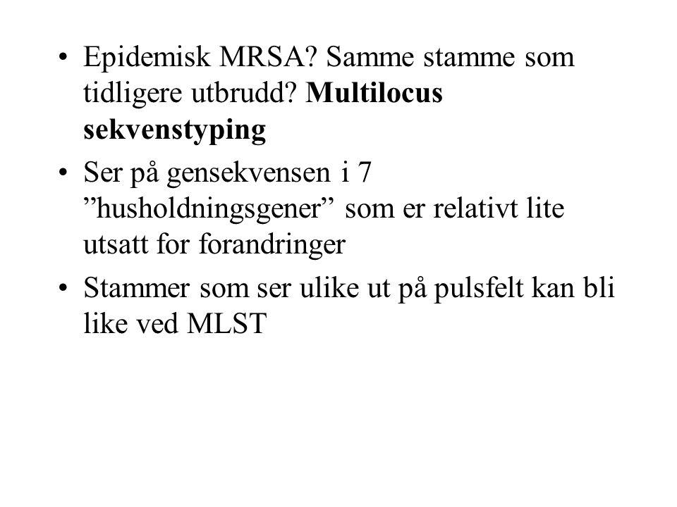 """Epidemisk MRSA? Samme stamme som tidligere utbrudd? Multilocus sekvenstyping Ser på gensekvensen i 7 """"husholdningsgener"""" som er relativt lite utsatt f"""