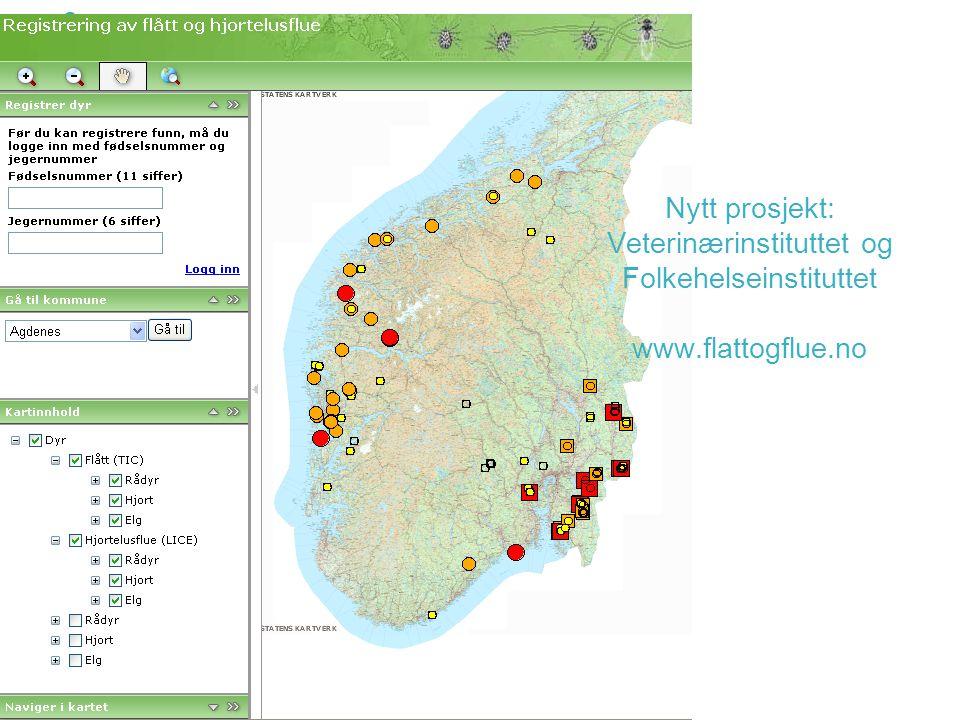 Nytt prosjekt: Veterinærinstituttet og Folkehelseinstituttet www.flattogflue.no