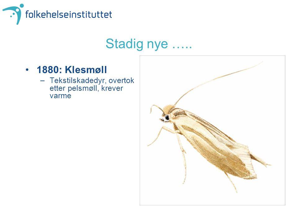 Stadig nye ….. 1880: Klesmøll –Tekstilskadedyr, overtok etter pelsmøll, krever varme