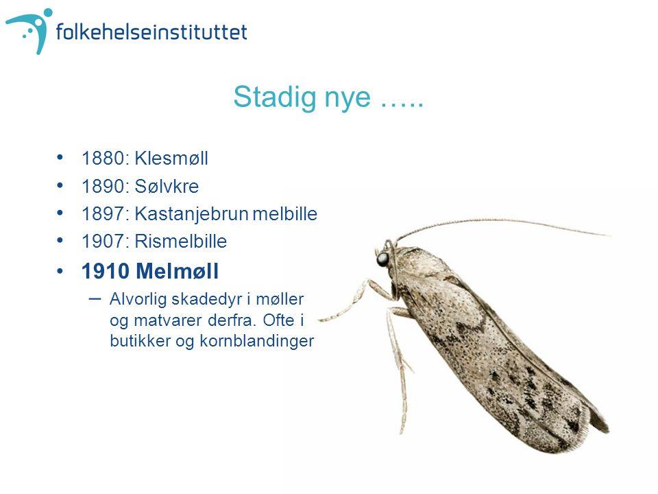 Stadig nye ….. 1880: Klesmøll 1890: Sølvkre 1897: Kastanjebrun melbille 1907: Rismelbille 1910 Melmøll –Alvorlig skadedyr i møller og matvarer derfra.