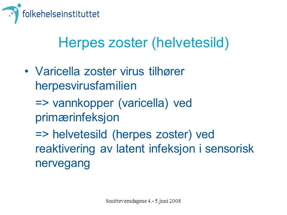 Smitteverndagene 4.- 5.juni 2008 Herpes zoster (helvetesild) Varicella zoster virus tilhører herpesvirusfamilien => vannkopper (varicella) ved primæri