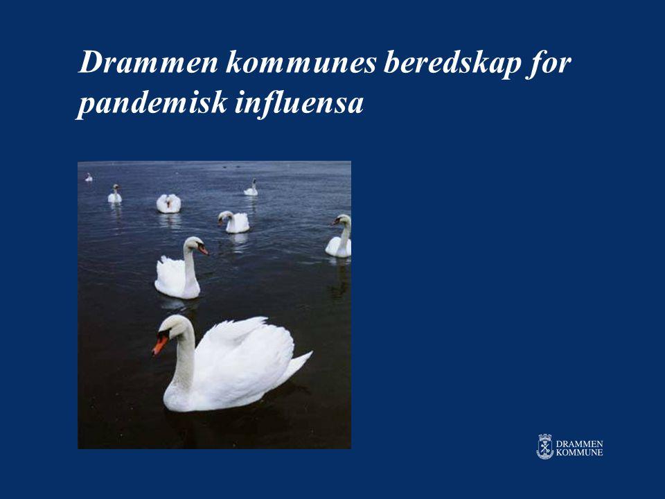Drammen kommunes beredskap for pandemisk influensa