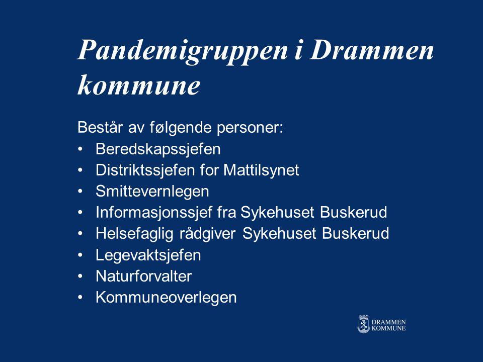 Pandemigruppen i Drammen kommune Består av følgende personer: Beredskapssjefen Distriktssjefen for Mattilsynet Smittevernlegen Informasjonssjef fra Sy